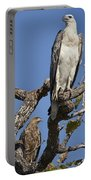 Sea Eagle And Brown Kite Sharing A Tree Portable Battery Charger