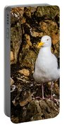 Sea Gull Portable Battery Charger