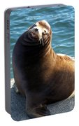 Sea Lion Basking In The Sun Portable Battery Charger