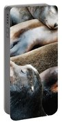 Sea Lion Dreams Portable Battery Charger