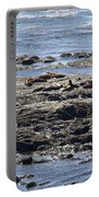 Sea Lion Resort Portable Battery Charger