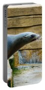 Sea Lion Side View Portable Battery Charger