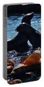 Sea Lions In San Francisco Bay Portable Battery Charger