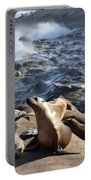 Sea Lions Seek Shelter Portable Battery Charger