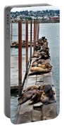 Sea Lions Sleeping Portable Battery Charger by Robert Bales