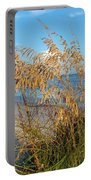 Sea Oats 2 Portable Battery Charger