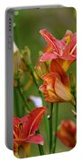 Sea Of Lilies Portable Battery Charger