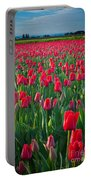 Sea Of Red Tulips Portable Battery Charger by Inge Johnsson