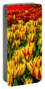Sea Of Tulips Portable Battery Charger