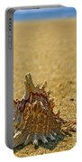 Sea Shell By The Sea Shore Portable Battery Charger