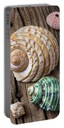 Sea Shells With Urchin  Portable Battery Charger