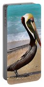 Sea Sick Sam Portable Battery Charger