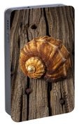 Sea Snail Shell On Old Wood Portable Battery Charger