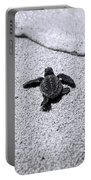 Sea Turtle Portable Battery Charger by Sebastian Musial