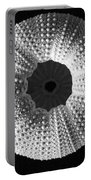 Sea Urchin In Black And White Portable Battery Charger