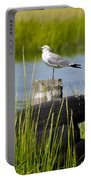 Seagull At Weeks Landing Portable Battery Charger