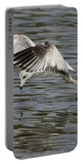 Seagull Dive Portable Battery Charger