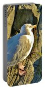 Seagull In Shadow Portable Battery Charger
