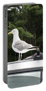 Seagull On Car Portable Battery Charger