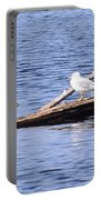 Seagull On Driftwood Portable Battery Charger
