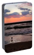 Seagull With Sunset Portable Battery Charger