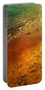 Seagulls At Sunset Portable Battery Charger