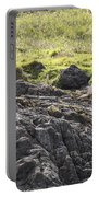 Seal - Montague Island - Austrlalia Portable Battery Charger