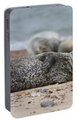 Seal Pup On Beach Portable Battery Charger
