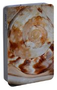 Seashell Abstract 5 Portable Battery Charger