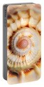 Seashell Wall Art 11 - Spiral Of Harpa Ventricosa Portable Battery Charger