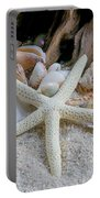 Seashells And Driftwood 2 Portable Battery Charger