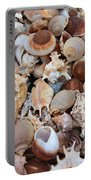 Seashells - Vertical Portable Battery Charger