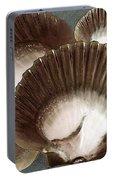 Seashells Spectacular No 22 Portable Battery Charger