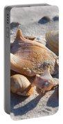 Seashells Portable Battery Charger