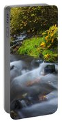 Seasons Change Portable Battery Charger