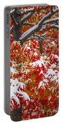 Seasons Of Change Portable Battery Charger