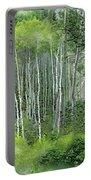 Seasons Of The Aspen Portable Battery Charger by Carol Cavalaris