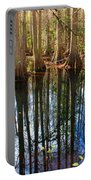 Sebring Cypress Swamp Reflection Portable Battery Charger