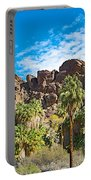Second Largest Stand Of Fan Palms In The World In Andreas Canyon In Indian Canyons-ca Portable Battery Charger