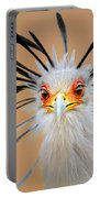 Secretary Bird Portrait Close-up Head Shot Portable Battery Charger by Johan Swanepoel