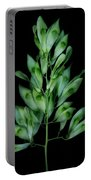 Seed Tree Portable Battery Charger