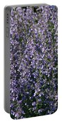 Seeing Lavender Portable Battery Charger