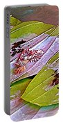 Selling Betel Nut For Chewing In Tachilek-burma Portable Battery Charger