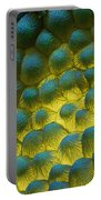 Sem Of Rapeseed Flower Portable Battery Charger