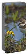 Semi-palmated Plover Pictures 44 Portable Battery Charger