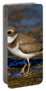 Semipalmated Plover Portable Battery Charger
