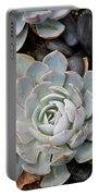 Sempervivum Portable Battery Charger