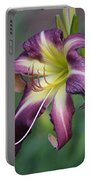 Sensual Refinement Portable Battery Charger