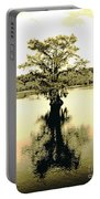Sepia Cypress Chicot Sp Louisiana Portable Battery Charger
