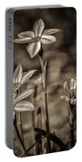 Sepia Dreams Portable Battery Charger